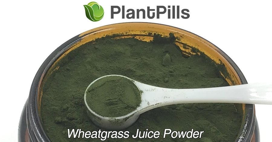 plantpills wheatgrass juice powder